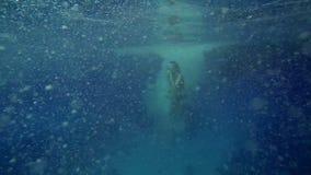 La mujer que salta adentro al mar almacen de metraje de vídeo