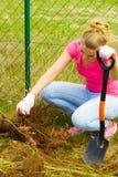La mujer quita el árbol del patio trasero, cavando el suelo con la pala imagen de archivo libre de regalías