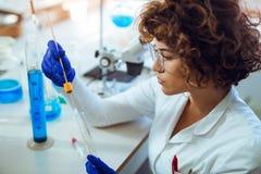 La mujer recoge el palillo forense de la muestra de la DNA Foto de archivo libre de regalías