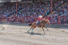 La mujer resuelta empuja el caballo a la meta en el barril que compite con la competencia Fotos de archivo