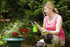 La mujer rubia madura trabaja en su jardín Fotos de archivo libres de regalías