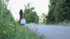 La mujer sola en un vestido largo camina con una maleta en el camino metrajes