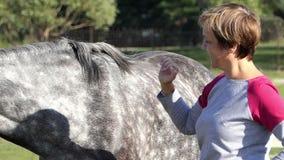 La mujer sonriente se coloca cerca de un caballo manchado en un césped en el slo-MES almacen de metraje de vídeo