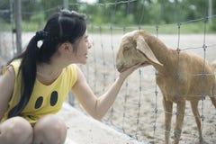 La mujer toma el pelo una cabra en el prado, juego con una cabra Fotos de archivo