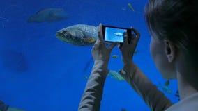 La mujer toma una foto en oceanarium metrajes