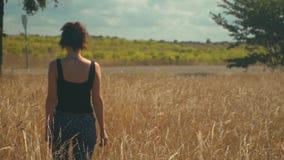 La mujer triste camina a lo largo de campo de oro en día soleado brillante almacen de video