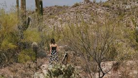 La mujer turística joven de la opinión de la parte posterior de la cámara lenta camina entre campo y la colina grandes del desier almacen de metraje de vídeo