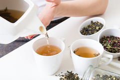La mujer vertió té verde caliente en las tazas Foto de archivo libre de regalías