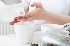 La mujer vertió té verde caliente en las tazas Imagen de archivo