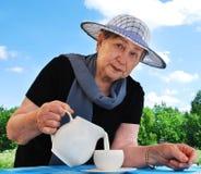 La mujer vierte la leche de un jarro en una taza Fotografía de archivo libre de regalías