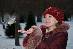 La mujer y el pájaro Imagen de archivo libre de regalías