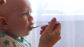 La mummia alimenta il bello bambino con un porridge della frutta del cucchiaio Il bambino esamina con attenzione un punto Primo p video d archivio
