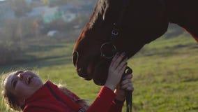 La museruola allegra dello stallone tocca il fronte del cavaliere Movimento lento Fine in su archivi video