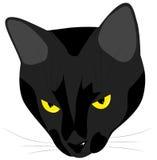 La museruola del gatto nero diabolico Immagine Stock