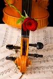 La musique de feuille de violon et a monté Photo stock