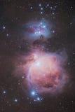 La nébuleuse grande d'Orion Photographie stock libre de droits