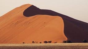 La Namibia, deserto di Namib, fotografie stock