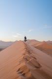 La Namibia - Sossusvlei Fotografia Stock Libera da Diritti