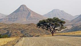 La Namibie, Damaraland, Photographie stock libre de droits