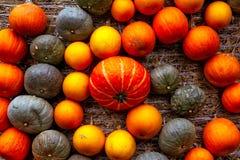 La naranja de la calabaza ató la decoración de la textura del fondo del primer de Haybale Imagenes de archivo