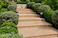 La naranja teja los pasos de la escalera que llevan a la casa con los pequeños árboles Imágenes de archivo libres de regalías