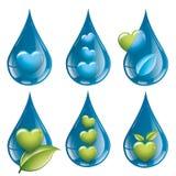 La natura è della vegetazione del sole e del logo acqua Fotografie Stock Libere da Diritti