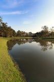 La natura ed il tramonto del landscapse in parco Immagini Stock