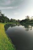La natura ed il tramonto del landscapse in parco Fotografia Stock