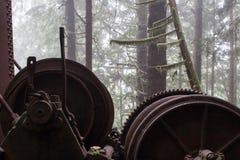 La natura incontra la macchina Immagine Stock Libera da Diritti
