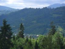 La natura magica e indimenticabile delle montagne carpatiche Fotografie Stock