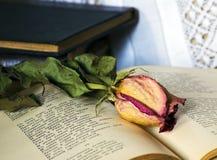 La natura morta con i vecchi libri ed è aumentato Fotografie Stock