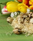 La natura morta di Pasqua con la molla fiorisce i tulipani e le uova di quaglia Fotografia Stock