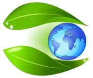 La natura protegge la terra Immagine Stock