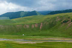 La natura selvaggia del Kazakistan Fotografie Stock