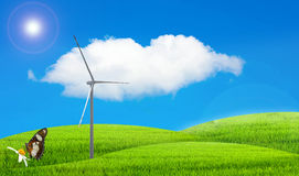 La naturaleza ajardina la hierba verde y el cielo azul Foto de archivo libre de regalías