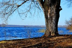 La naturaleza Altaya satisface el ojo Fotos de archivo libres de regalías