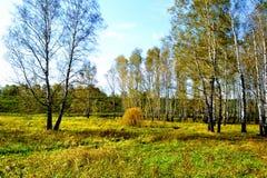 La naturaleza Altaya satisface el ojo Fotos de archivo