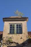 La naturaleza conquistó una casa en la ciudad vieja, ventana abuhardillada con la ventana Fotos de archivo