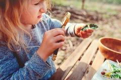 La naturaleza de exploración de la muchacha del niño en bosque temprano de la primavera embroma el aprendizaje amar la naturaleza Fotografía de archivo libre de regalías