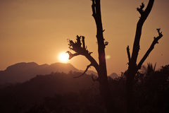 La naturaleza de la luz Fotos de archivo libres de regalías