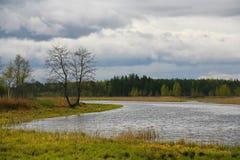 La naturaleza de Rusia septentrional ajardine con el bosque, el río, el terreno de aluvión del río y el prado ripícola Árbol soli Fotos de archivo libres de regalías