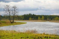 La naturaleza de Rusia septentrional ajardine con el bosque, el río, el terreno de aluvión del río y el prado ripícola Árbol soli Foto de archivo