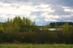 La naturaleza de Rusia septentrional ajardine con el bosque, el río, el terreno de aluvión del río y el prado ripícola Fotos de archivo