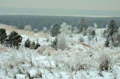 La naturaleza de Siberia imagen de archivo libre de regalías