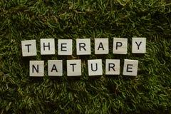 La naturaleza de la terapia escrita con las letras de madera cubicó forma en la hierba verde fotos de archivo libres de regalías