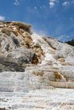 La naturaleza de Yellowstone Imagenes de archivo
