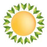 La naturaleza está de la vegetación del sol y del agua - logotipo Fotografía de archivo libre de regalías