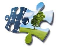 La naturaleza quiere energía solar Foto de archivo libre de regalías