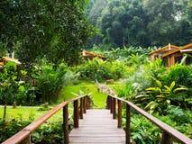 La naturaleza recurre Tailandia Foto de archivo libre de regalías