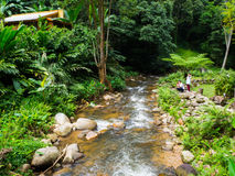 La naturaleza recurre Tailandia Imágenes de archivo libres de regalías
